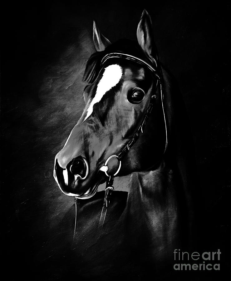 Greatest Black And White Horse Face Painting by Gull G FI84