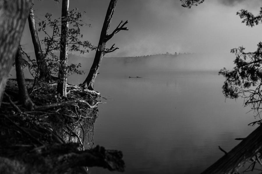 Black and White Morning by Jessica Brown