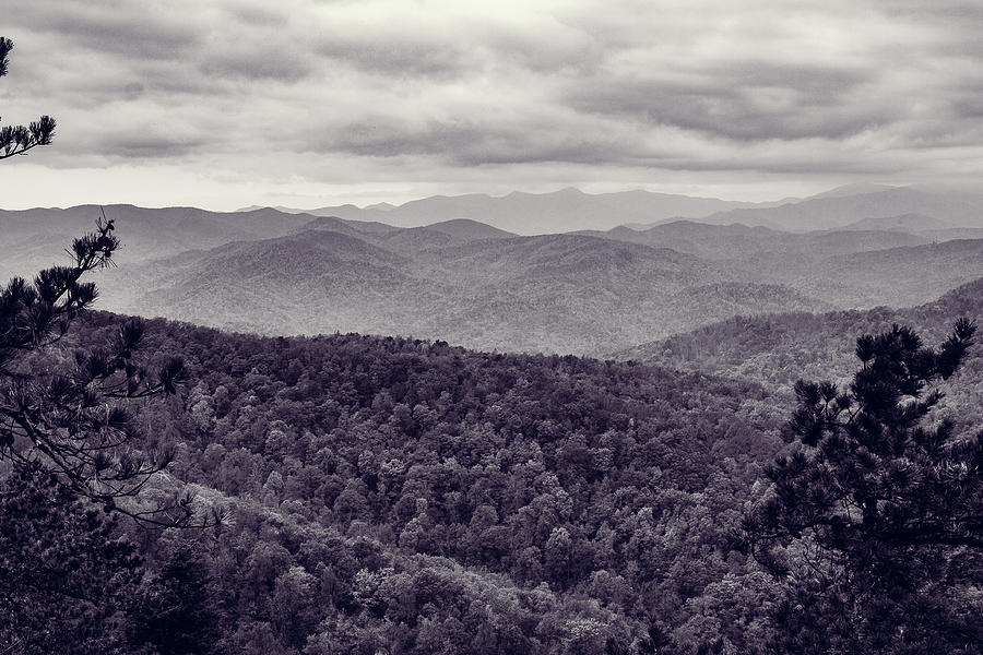 Black and White Mountains in Black Mountain, NC by Mela Luna