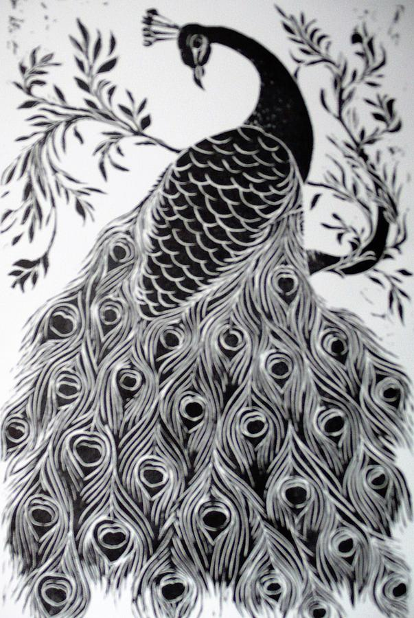 Peacock black and white picture - photo#13