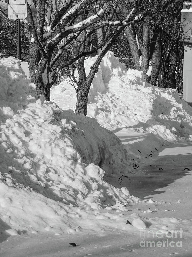 Black And White Photograph - Black And White Plowed Snow by Phil Perkins