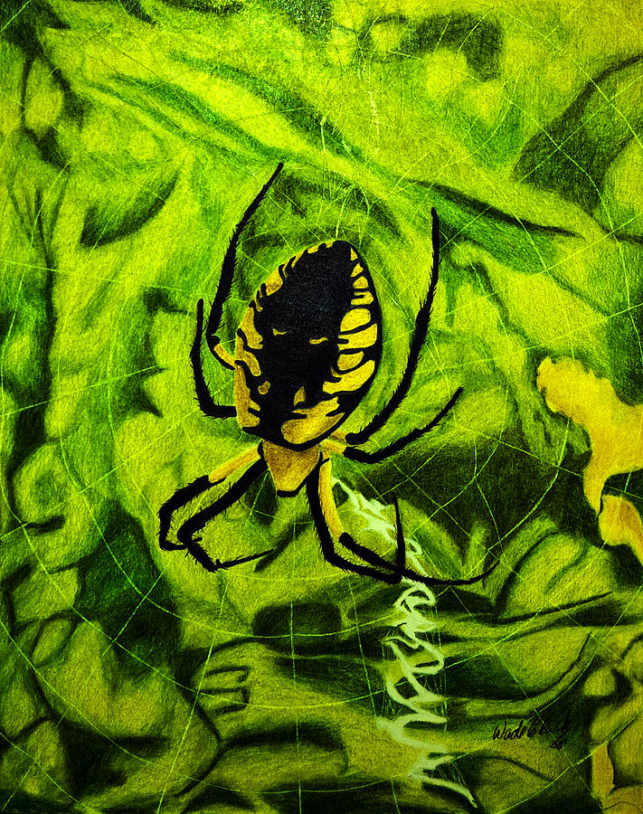 Nature Painting - Black And Yellow Agriope by Wade Clark