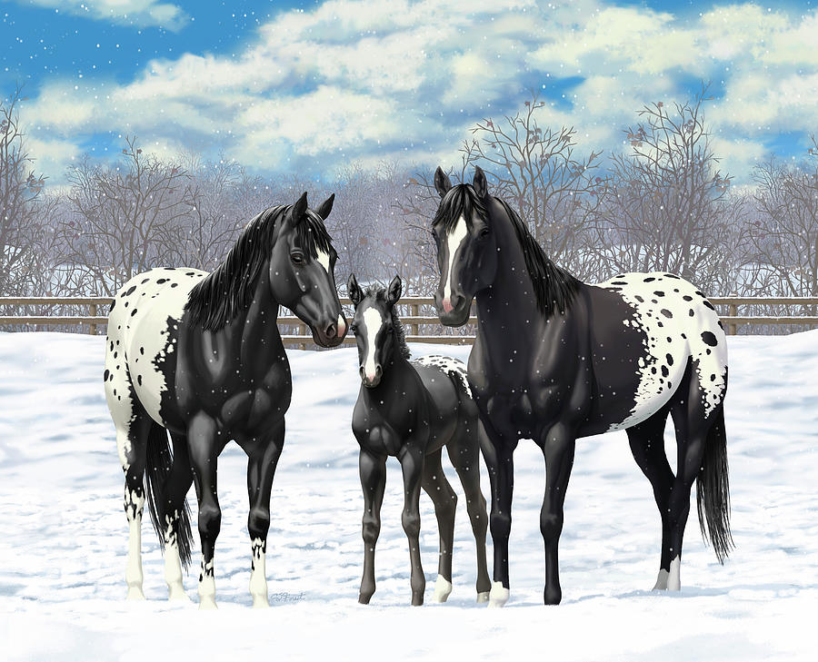 Image result for horses in winter