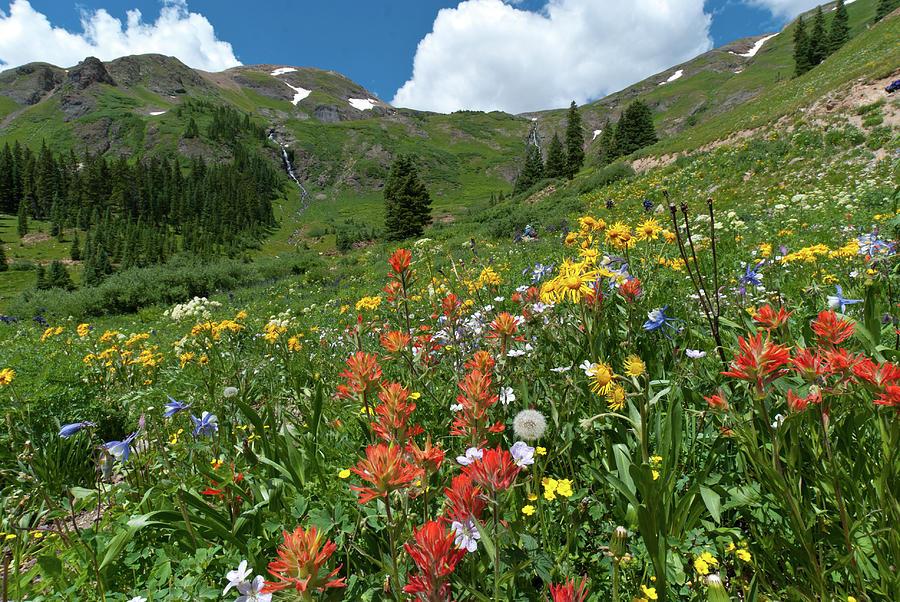 Black Bear Pass Photograph - Black Bear Pass Landscape by Cascade Colors