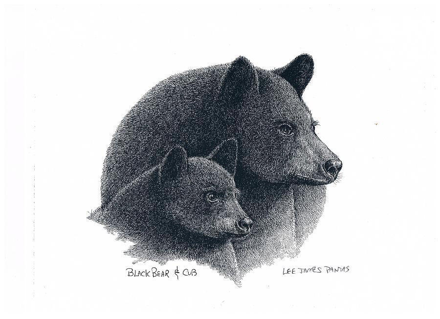 Bear Drawing - American Black Bear by Lee Pantas