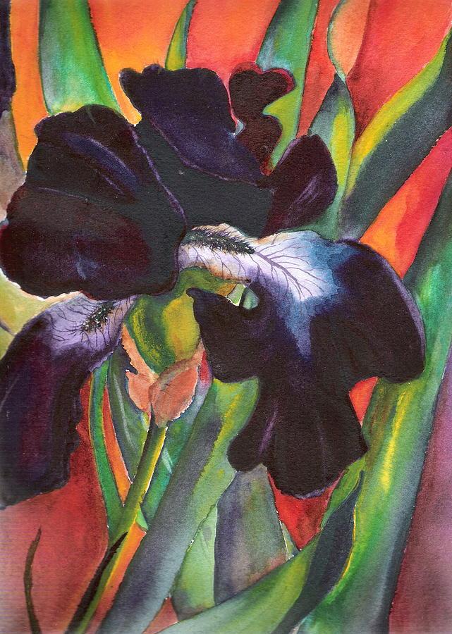 Black beauty by Marsha Woods