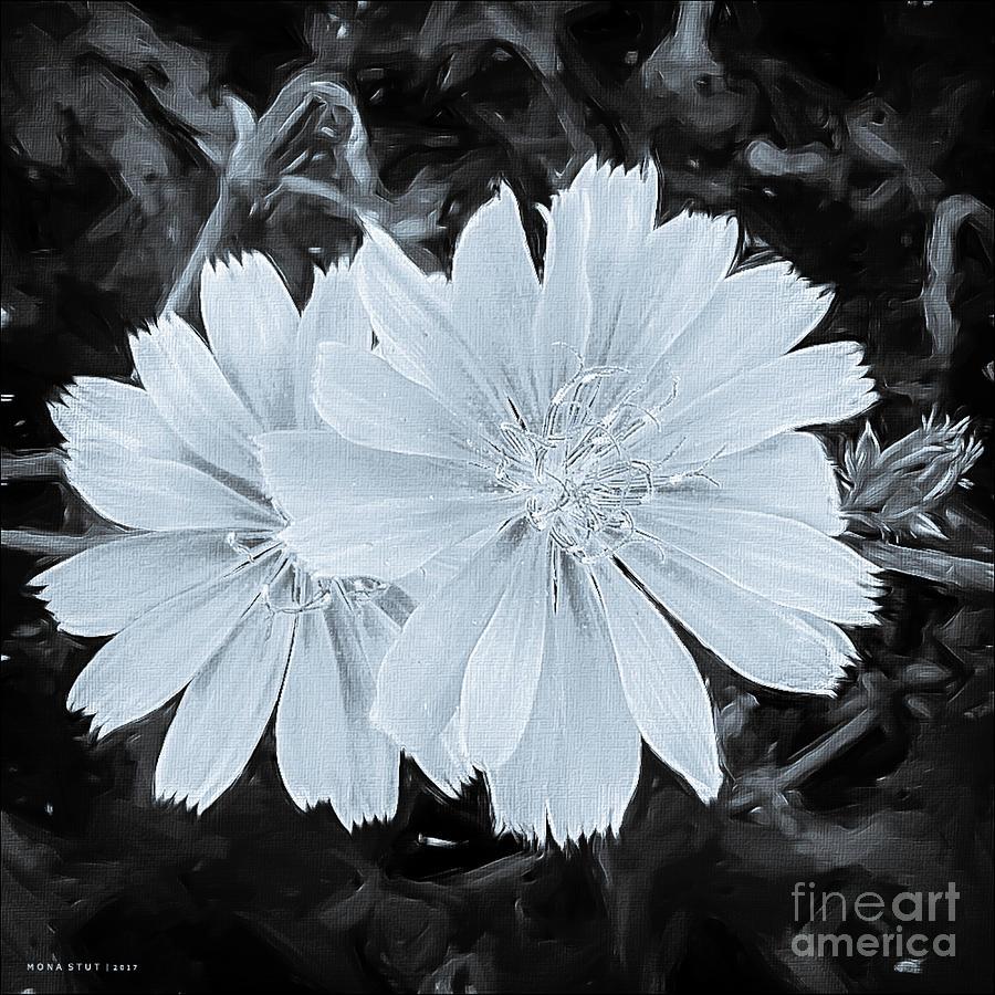 Blue Daisy Twins Bw Digital Art