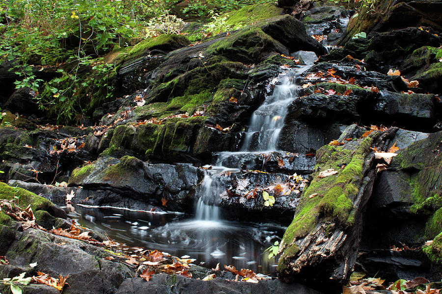 Long Exposure Photograph - Black Creek Falls in Autumn, 2016 by Jeff Severson