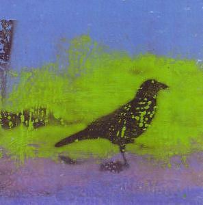 Crow Mixed Media - Black Crow by Billie J  Sullivan