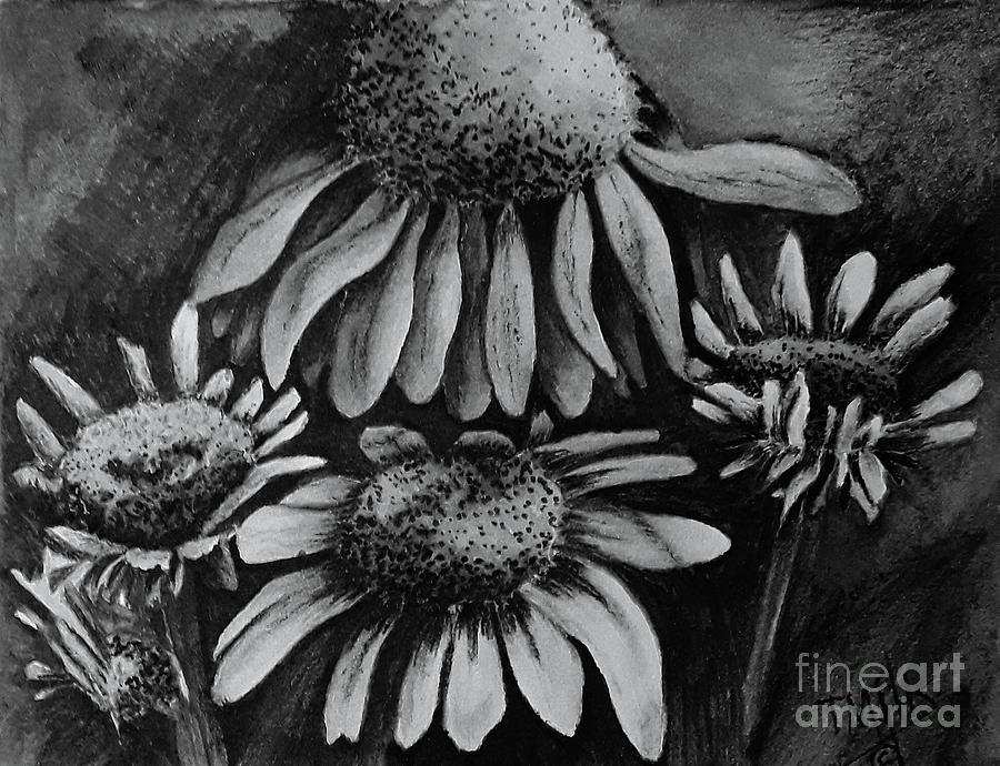 Coneflowers by Terri Mills
