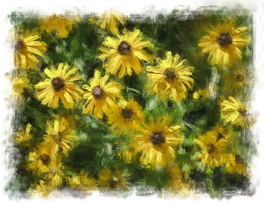 Flowers Painting - Black Eyed Suzies by Henry J Yasses