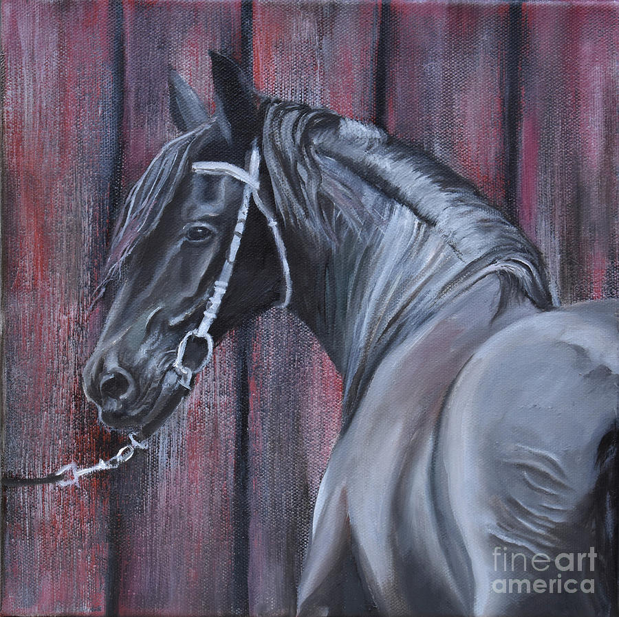 Black Friesian at the Stable by Anne Cameron Cutri