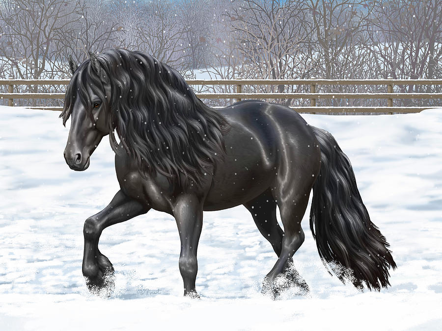 Horses Painting - Black Friesian Horse In Snow by Crista Forest