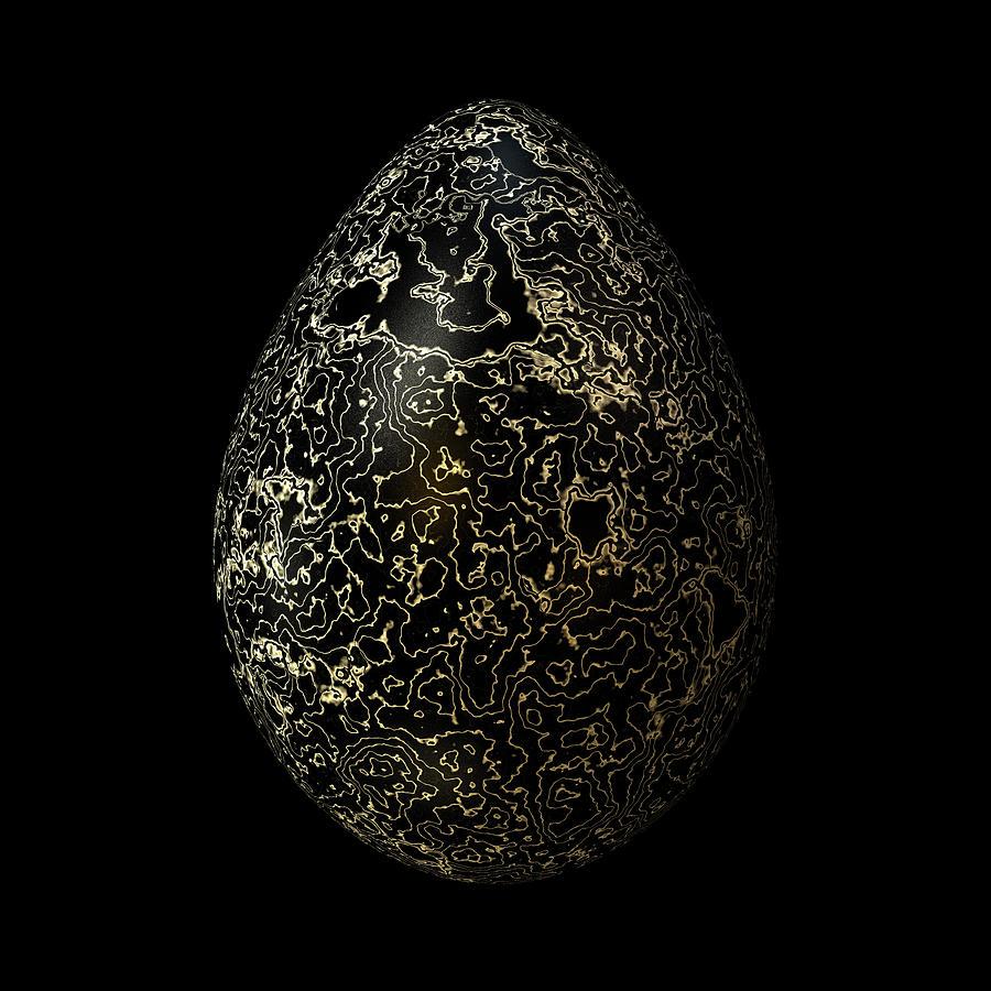 Black Gold Egg Digital Art