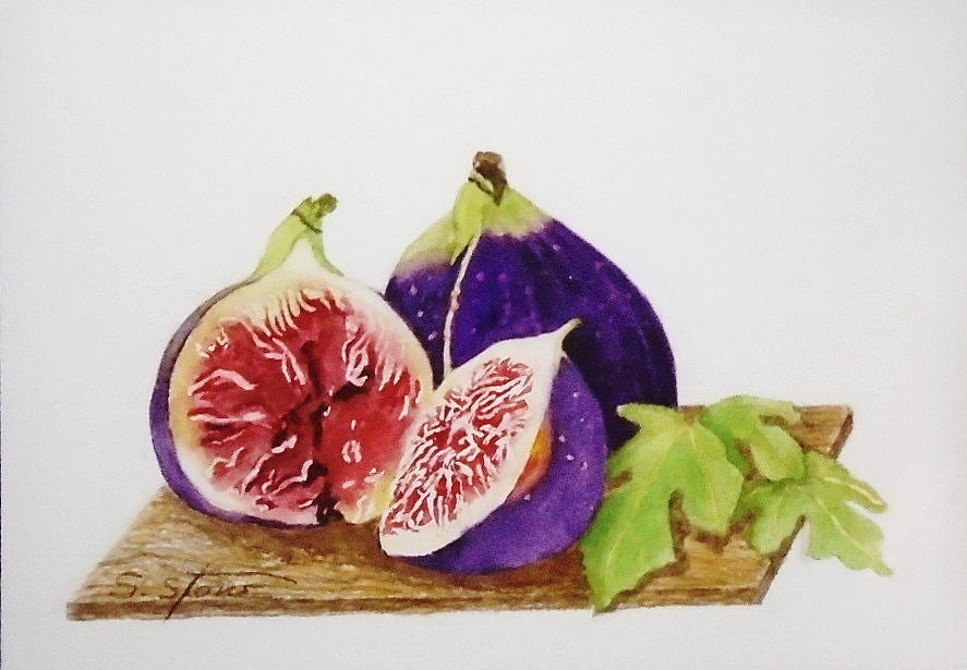 Still Life Painting - Black Mission Figs by Sandra Stone