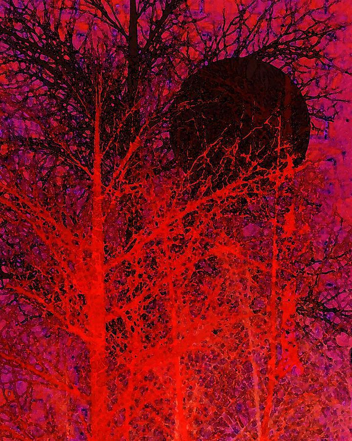 Abstract Digital Art - Black Moon by Richard Rizzo