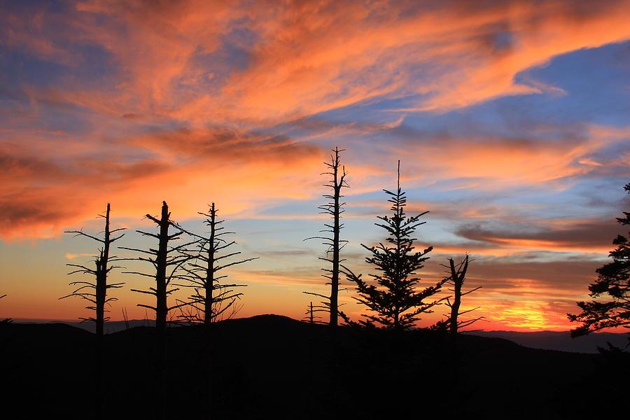Black Mountains Nc Photograph