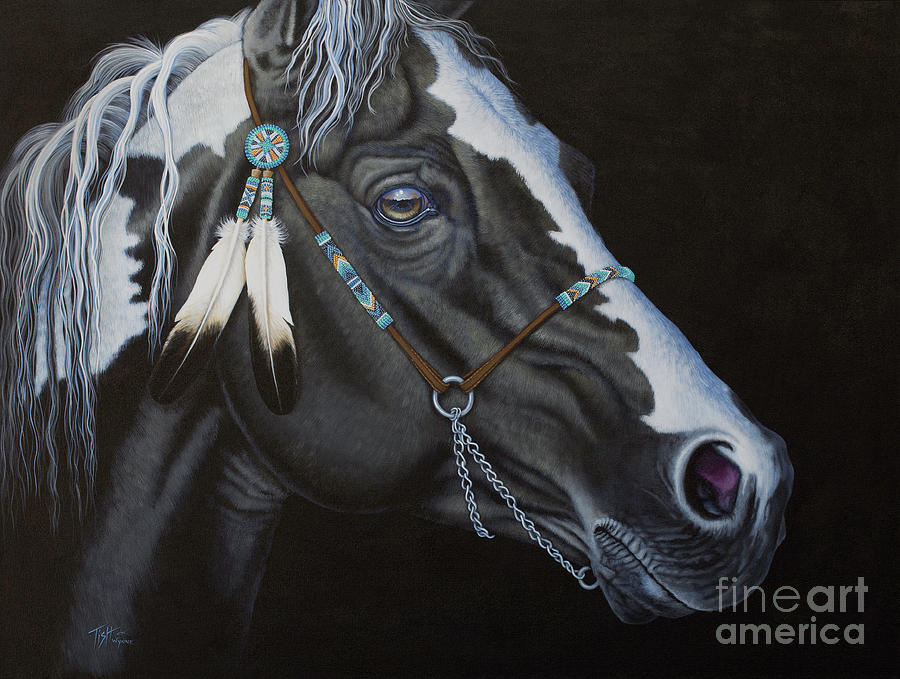 Indian Paint Horse by Tish Wynne