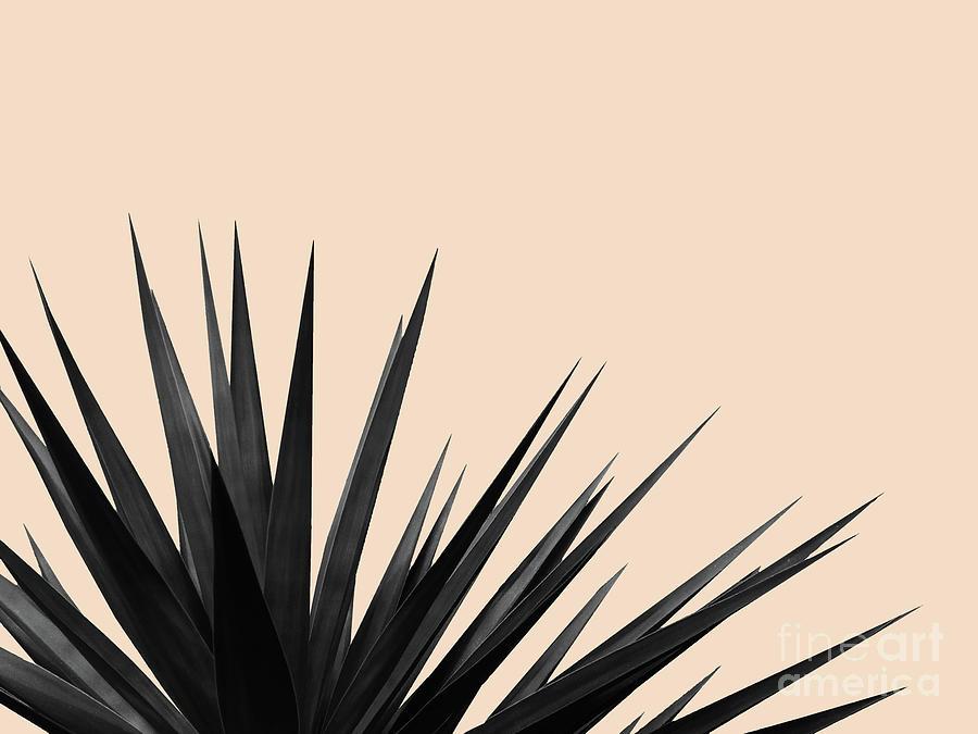 Black Palms on Pale Pink by EMANUELA CARRATONI