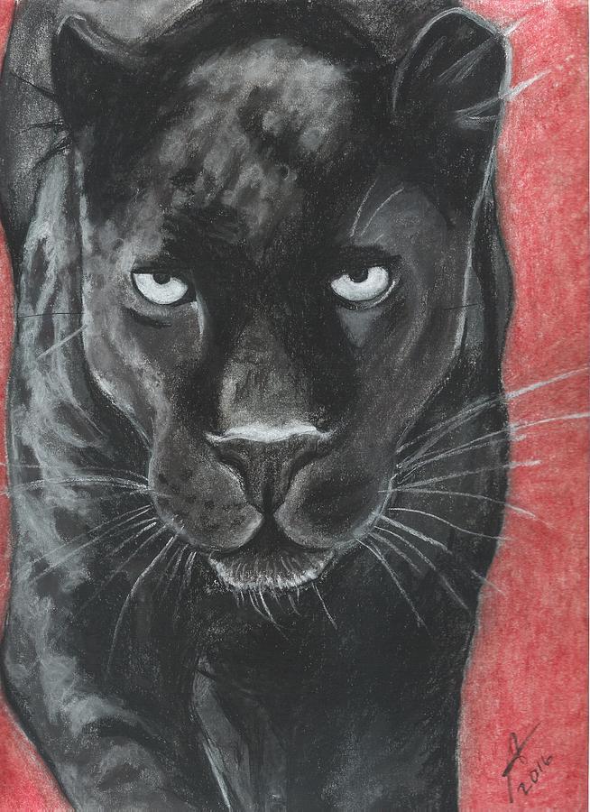 Black Panther In Pastel Drawing By Regina Warriner