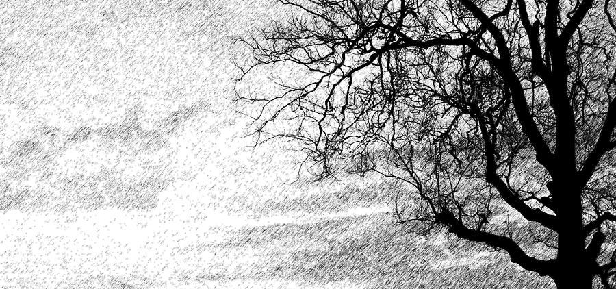 Sky Photograph - Black Rain by Ed Smith