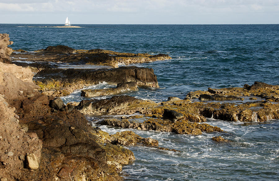 Sailboat Photograph - Black Rock Point And Sailboat by Jean Macaluso