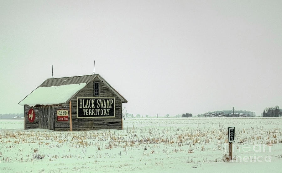 Black Swamp Territory Photograph - Black Swamp Territory by Valencia Photography
