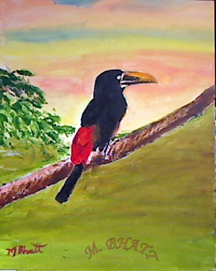 Wild Life Painting - Black Toucan by M bhatt