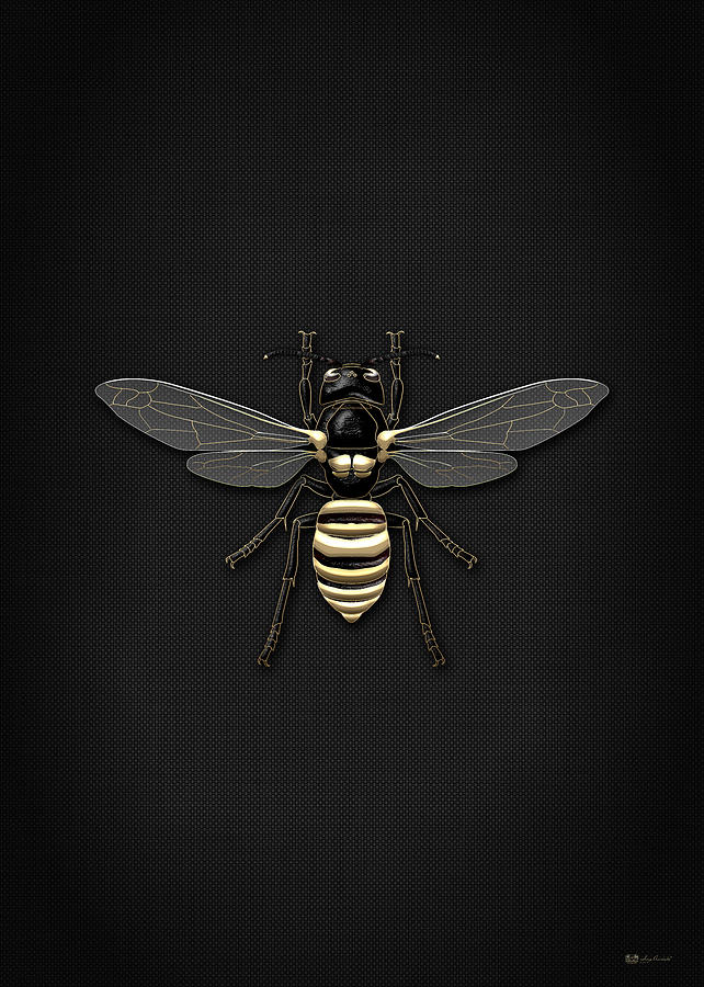 Creepy Crawlers Photograph - Black Wasp with Gold Accents on Black  by Serge Averbukh