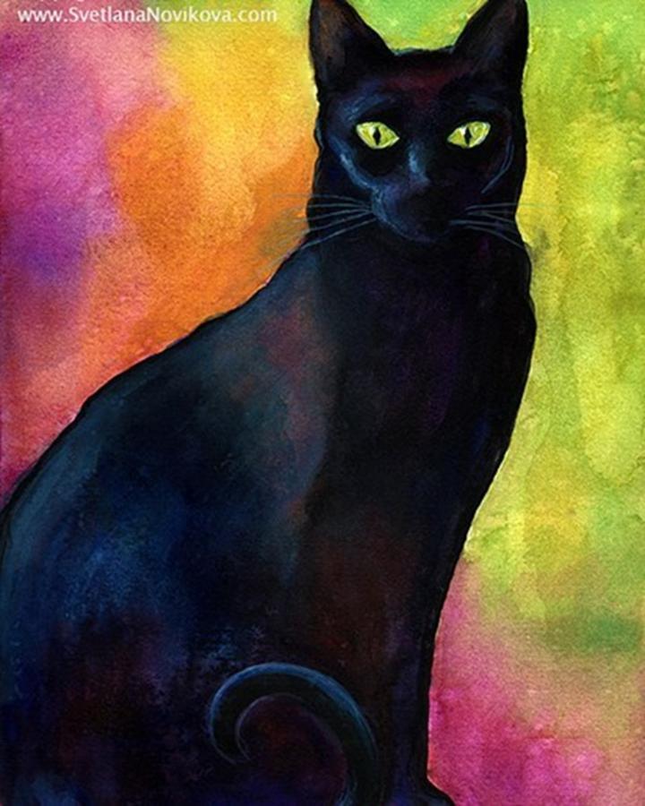 Watercolor Photograph - Black Watercolor Cat Painting By by Svetlana Novikova