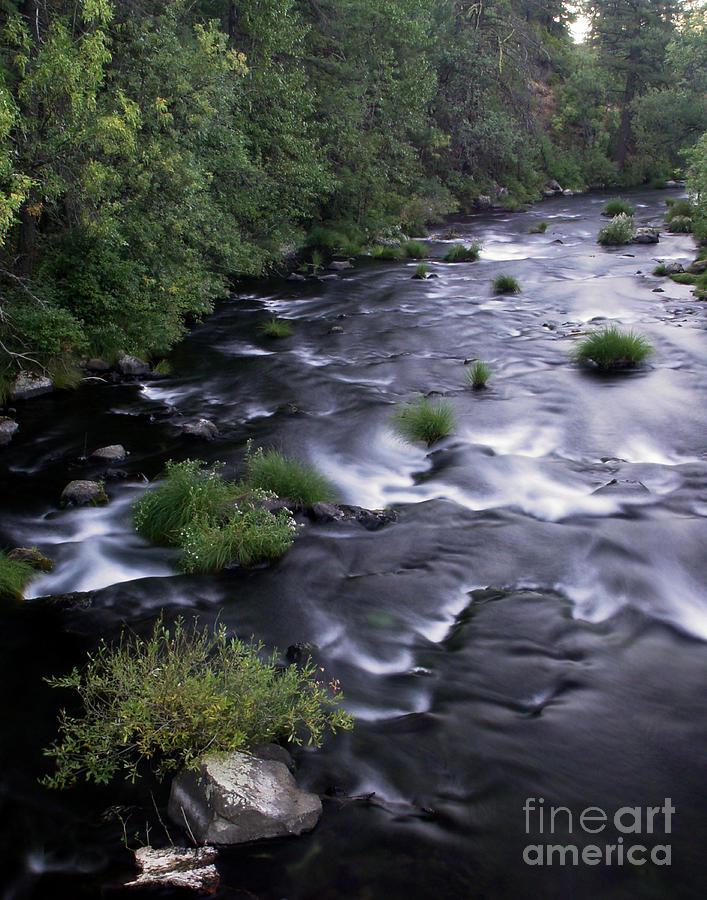 River Photograph - Black Waters by Peter Piatt