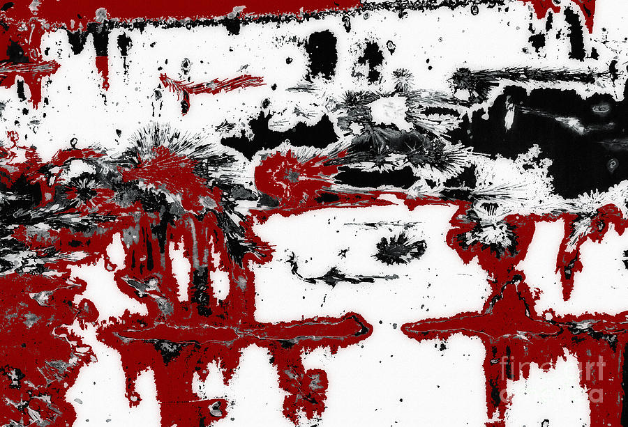 Black White Red Allover  III by Lee Craig