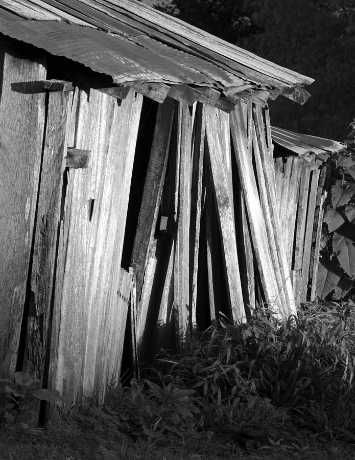 Ansel Adams Photograph - Blackburn-barn by Curtis J Neeley Jr