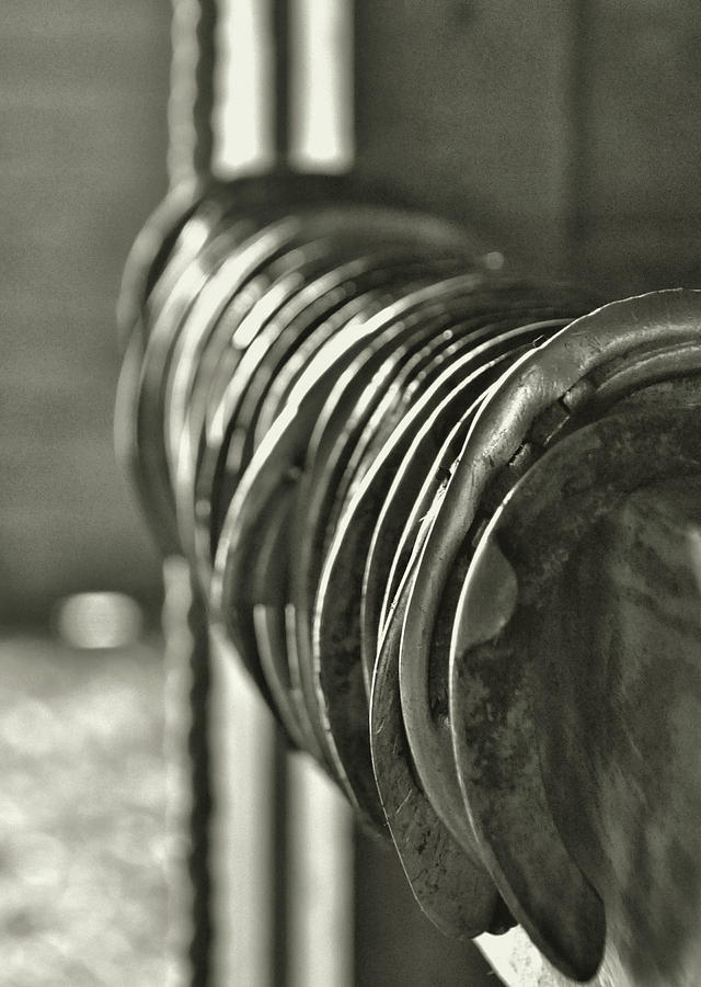 Horse Photograph - Blacksmith Collection by JAMART Photography