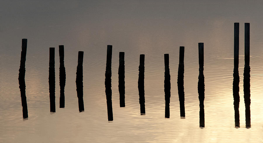 2012 Photograph - Blackwater Abstract by Lauren Brice