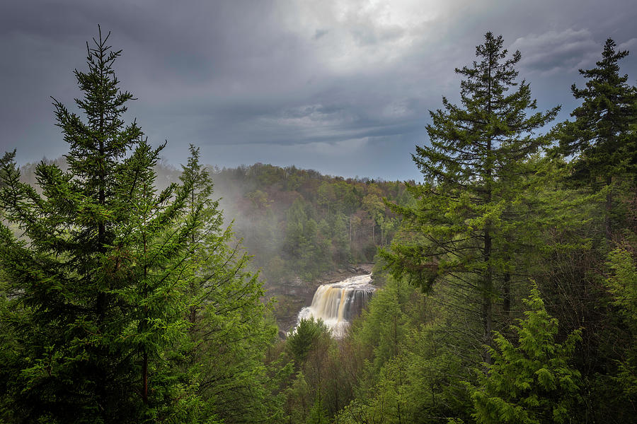 Alexandria Photograph - Blackwater Falls In Spring by Michael Donahue