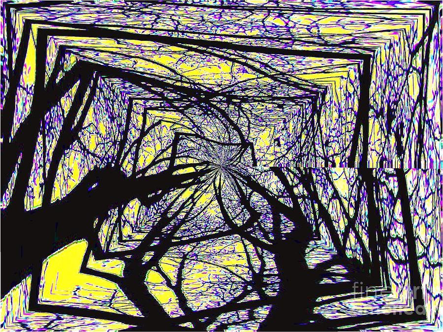 Blacky Bear Forest Mixed Media
