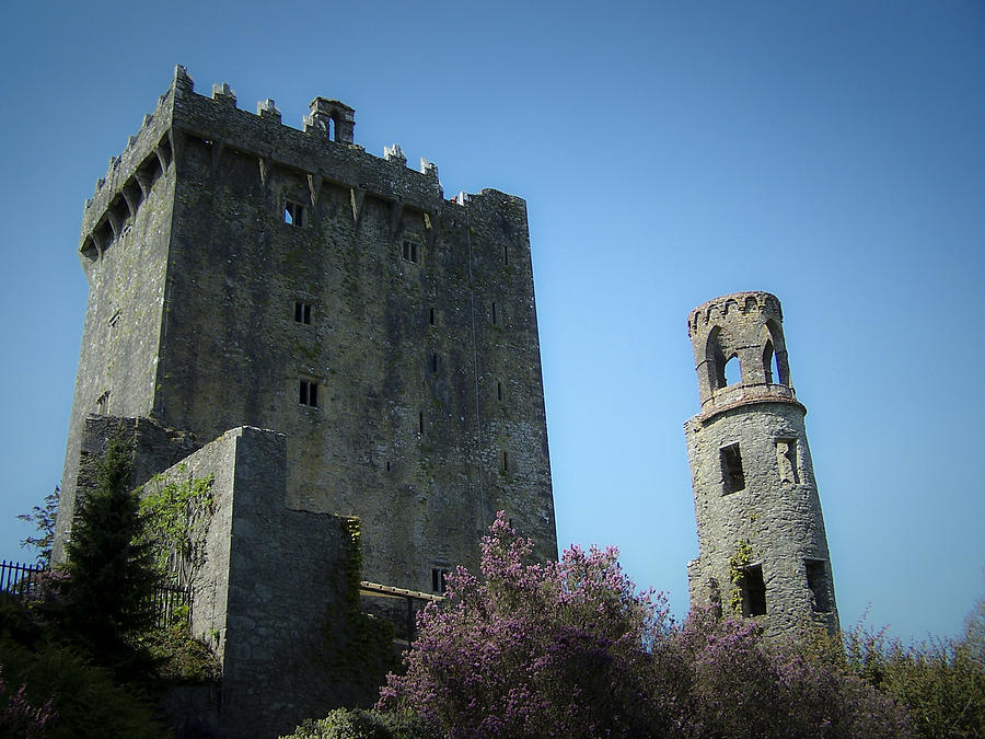 Irish Photograph - Blarney Castle And Tower County Cork Ireland by Teresa Mucha