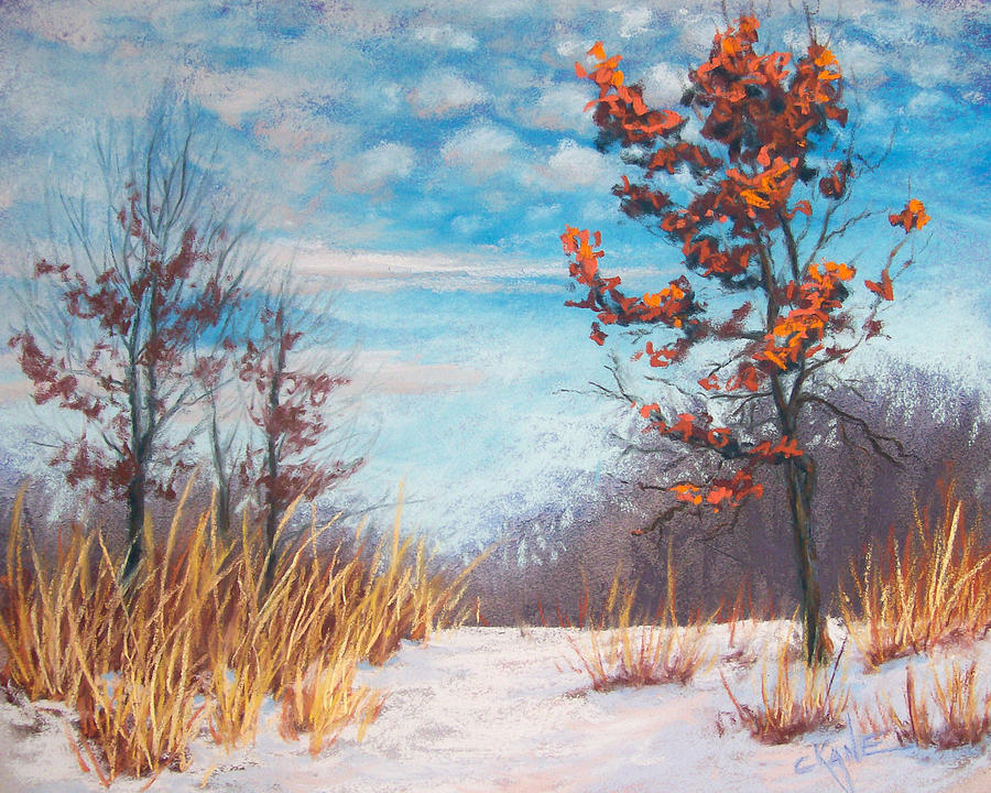 Pastel Pastel - Blazing Winter Grasses by Christine Camp