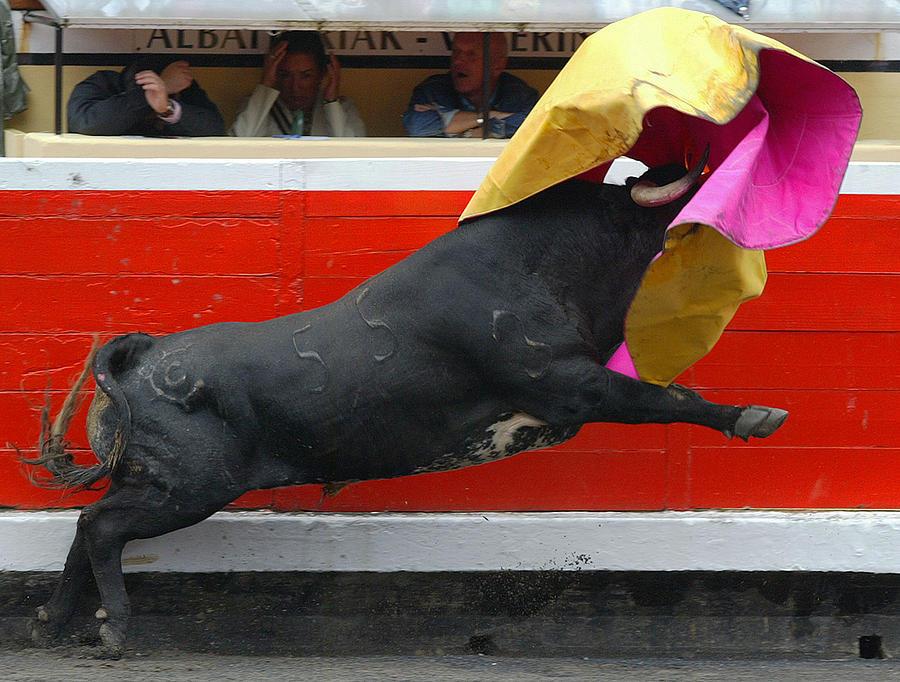 Bullfighting Photograph - Blind Bull by Rafa Rivas