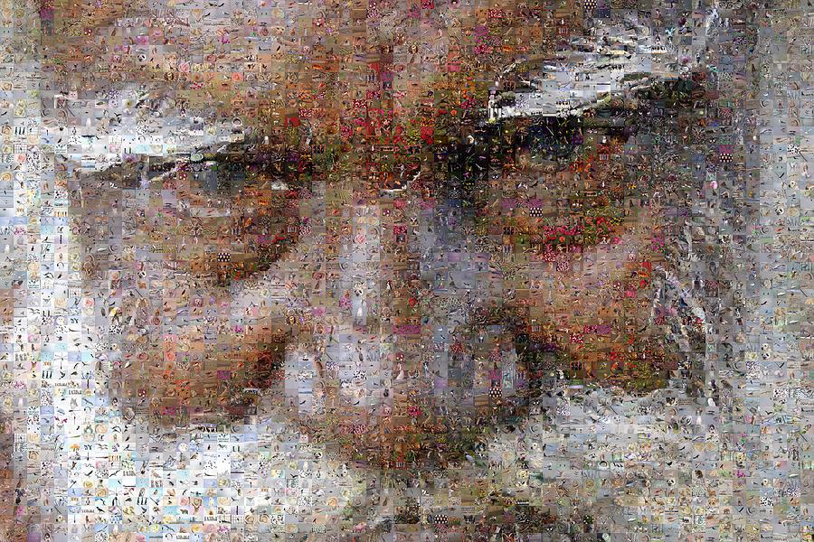 Mosaic Digital Art - Blind by Gilberto Viciedo