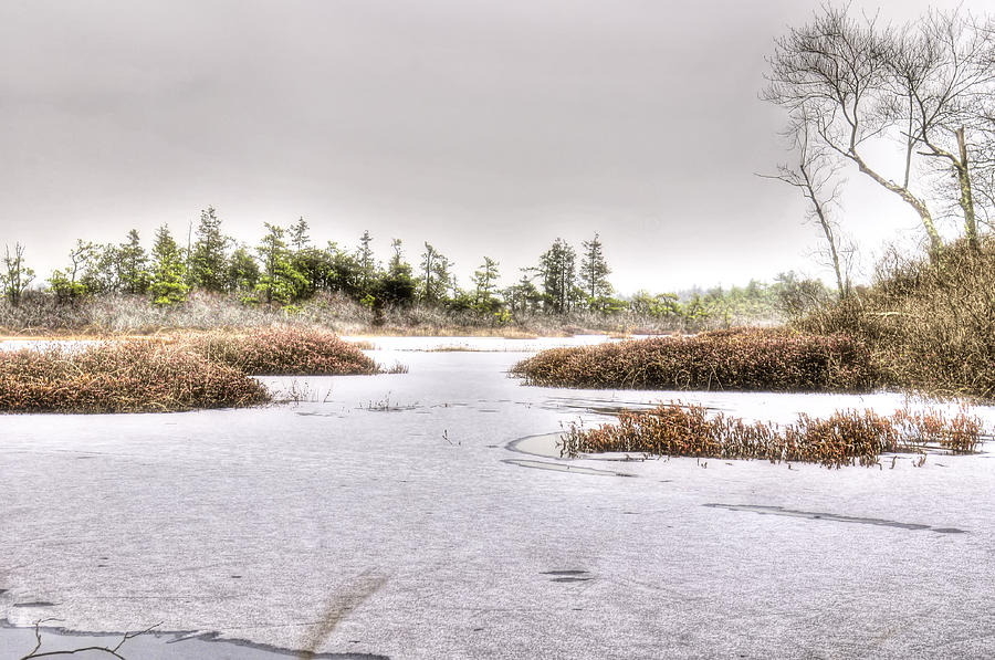 Landscape Photograph - Blizzard At Whitesbog by Louis Dallara
