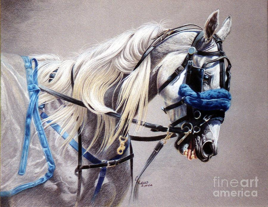 Colored Pencil Drawing - Blizzard Babe by Carrie L Lewis