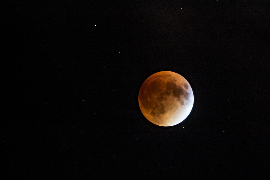Full Moon Photograph - Blood Moon Eclipse by Pati Bobeck