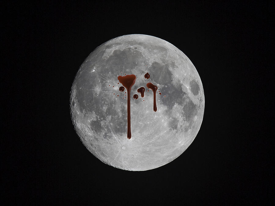 Moon Photograph - Blood Moon by Nestor Colon