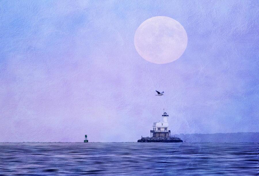 Moon Photograph - Blood Moon Rising by Linda C Johnson