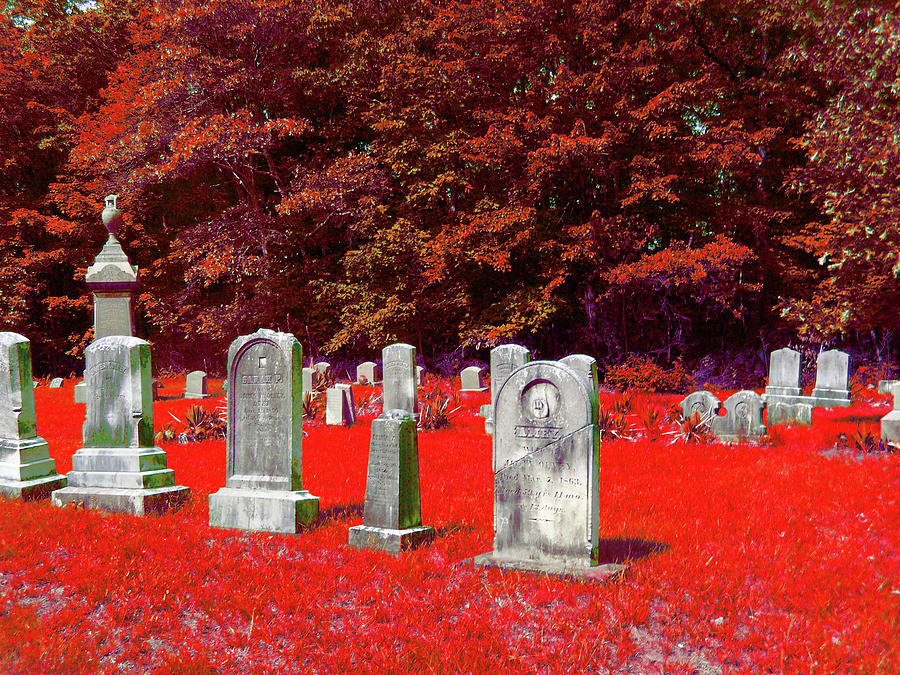 Scenic Photograph - Blood Red by Erin Rosenblum