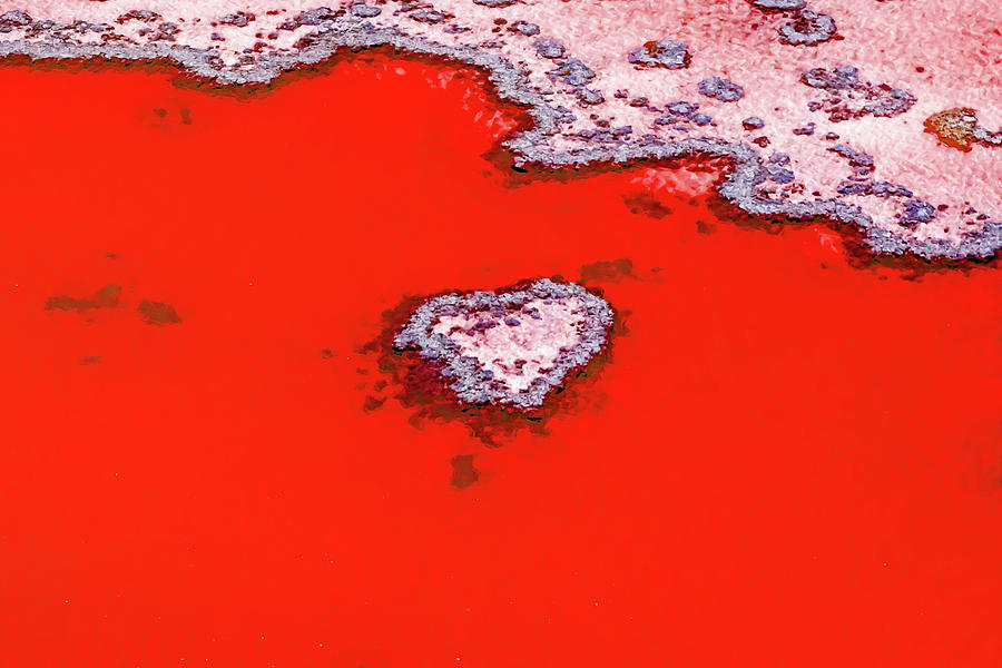 Australia Photograph - Blood Red Heart Reef by Az Jackson