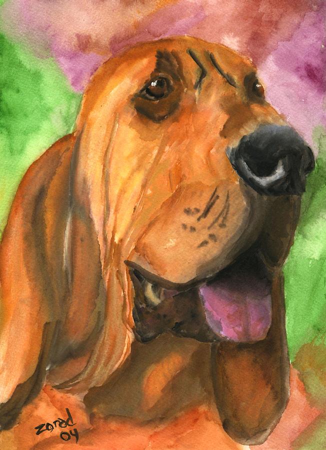Bloodhound Painting - Bloodhound Dog Art by Mary Jo Zorad