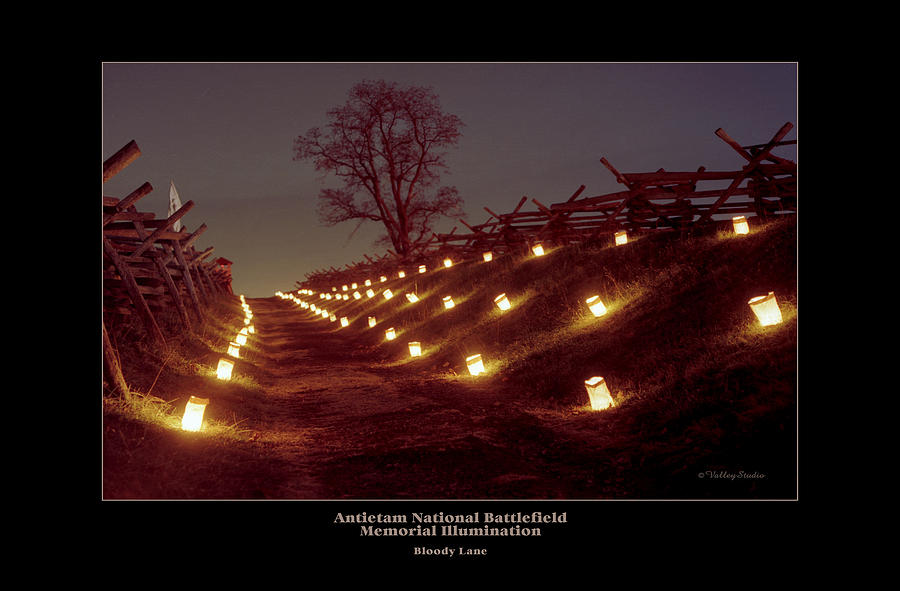 Antietam Battlefield Photograph - Bloody Lane 99 by Judi Quelland